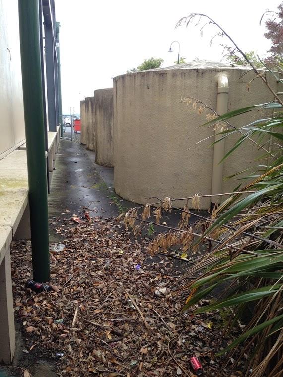 rain_water_harvesting
