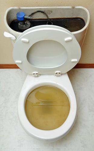 blocked_toilet